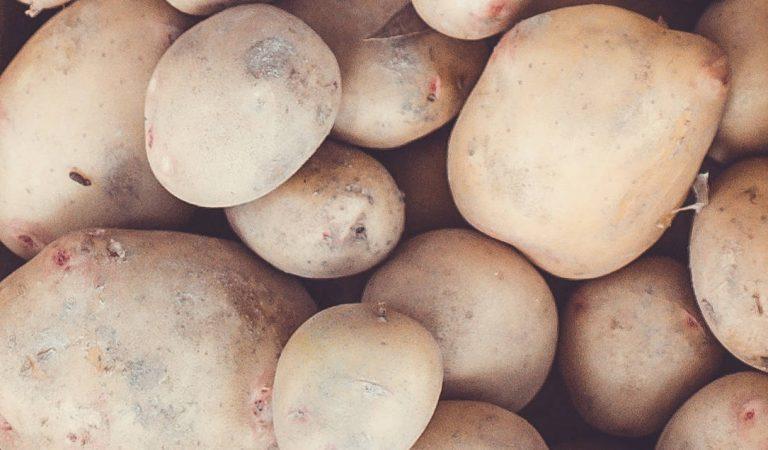 Sadbové zemiaky pre rok 2018