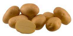 Sadbové zemiaky