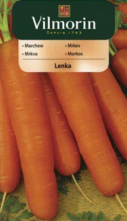 Mrkva Lenka