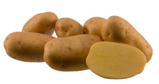 Sadbové zemiaky Agria