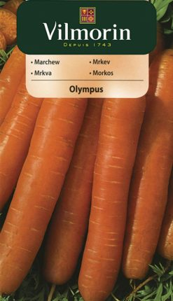 Mrkva Olympus