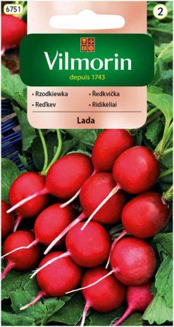 Reďkovka Lada