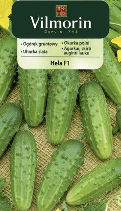 Uhorka Hela