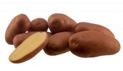 Sadbové zemiaky Manitou