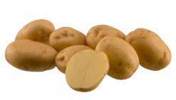 Sadbové zemiaky Riviera