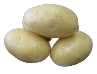 Sadbové zemiaky Dalli