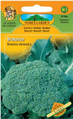 Brokolica Limba