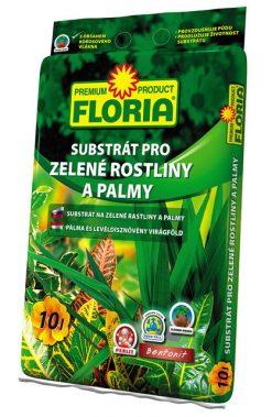 Floria palmy 10l